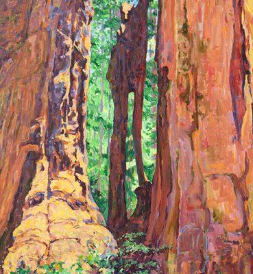 Joy Collier, California's Giant Sequoias, Found Nowhere Else on Earth