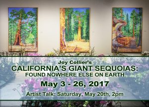 Joy Collier Giant Sequoias